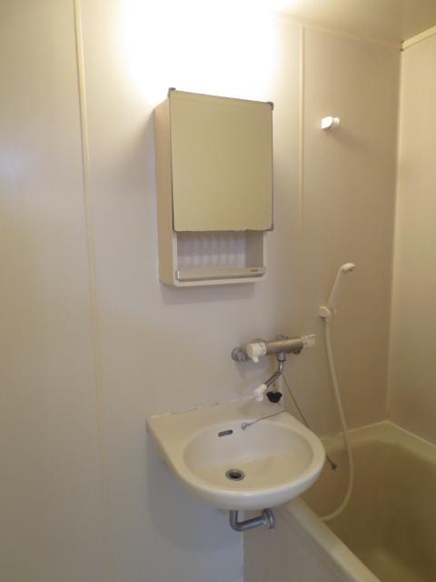 ラピス等々力 202号室の洗面所