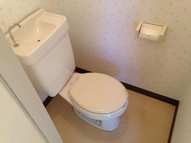 ラピス等々力 303号室のトイレ