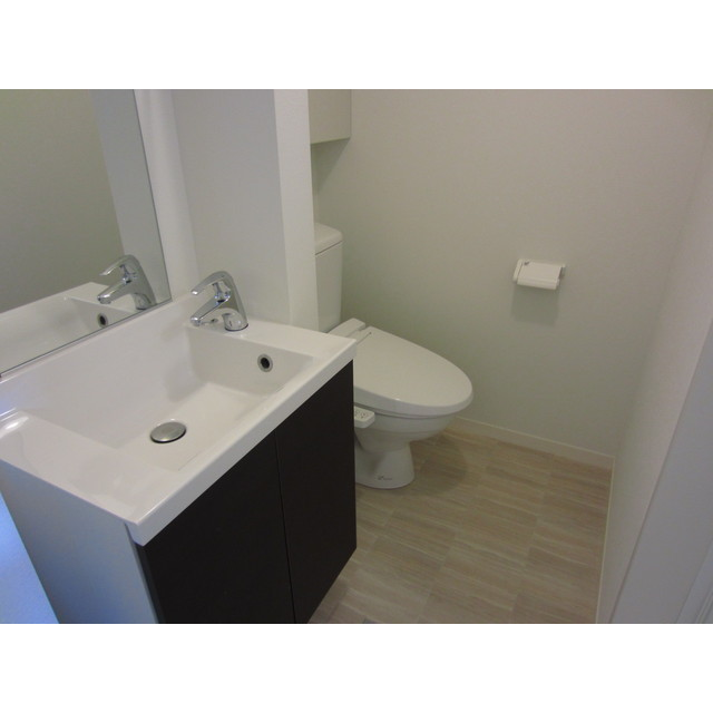 カーサヴェルデ 101号室の洗面所