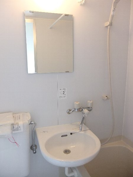 TOSHIハウス 204号室の洗面所