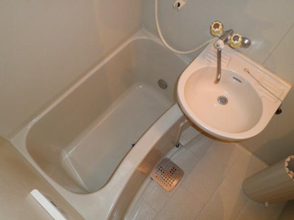サンシティハイツ東 00203号室の洗面所