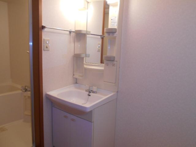 ラヴィッサンヴィーⅡ 303号室の洗面所