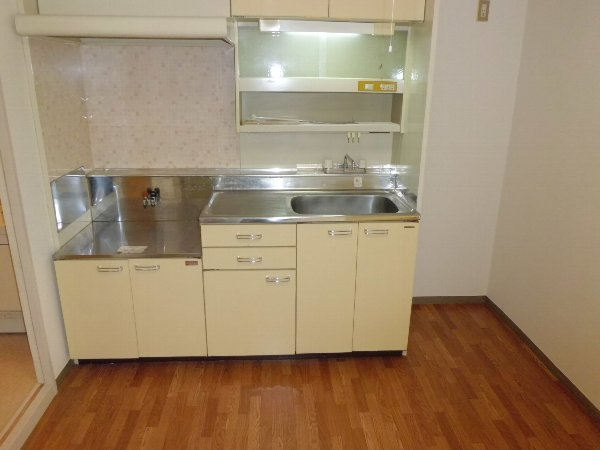セレン指扇ハイム 305号室のキッチン