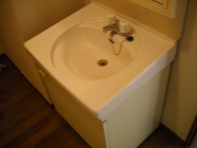 VILLA ITO No1・2 1-203号室の洗面所