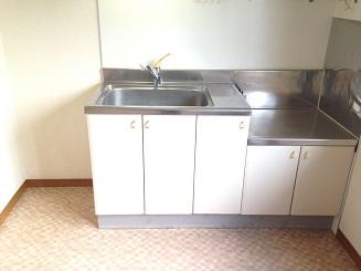 ア・ネスタ 101号室のキッチン
