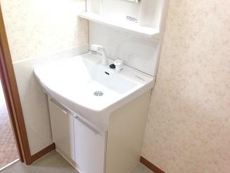 ア・ネスタ 101号室の洗面所