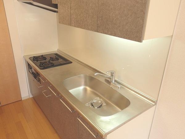 プレジール立川 205号室のキッチン