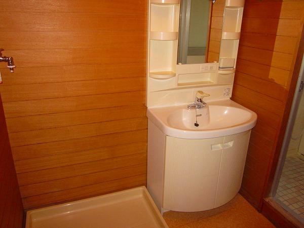 アメニティーホームズ 205号室の洗面所