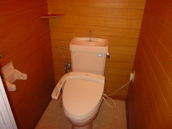 アメニティーホームズ 205号室のトイレ