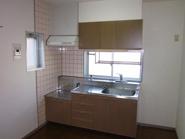 アメニティーホームズ 205号室のキッチン