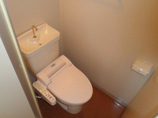 チェリーヒルズ 102号室のトイレ