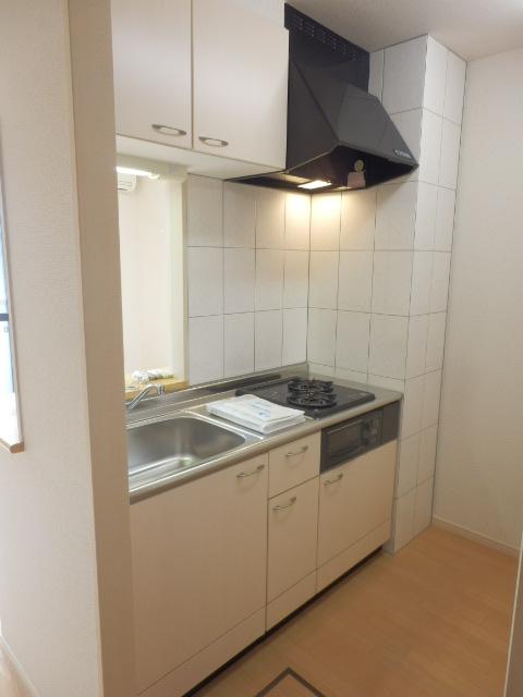 ルミエールユウ 205号室のキッチン