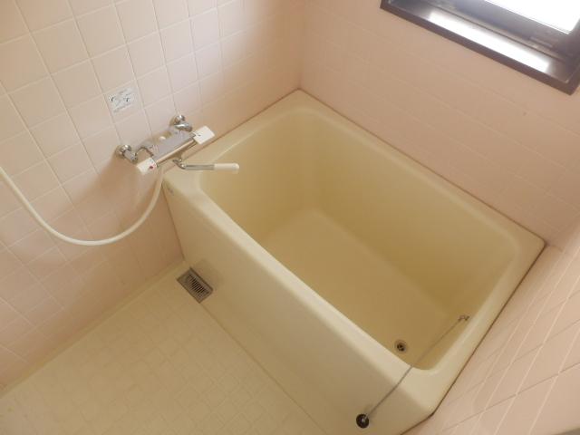 プラトー藤 101号室の風呂