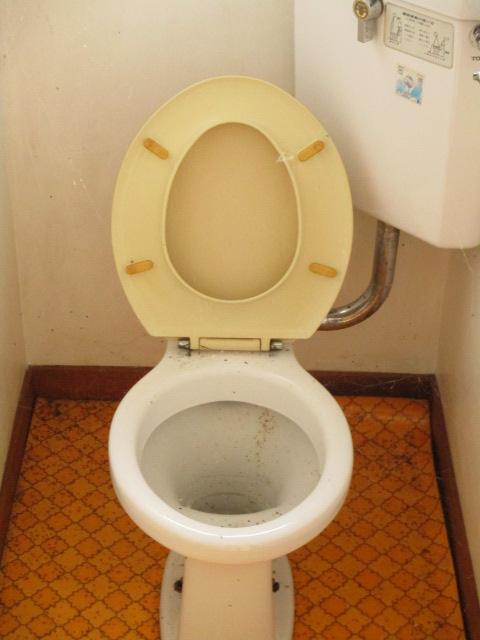 陽東ハイツ 203号室のトイレ