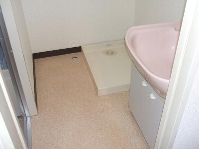 原第6マンション 203号室の洗面所
