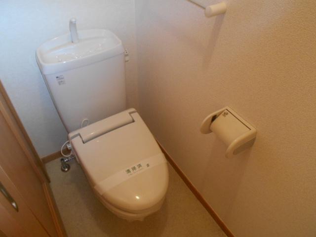 ルミエール南館 102号室のトイレ