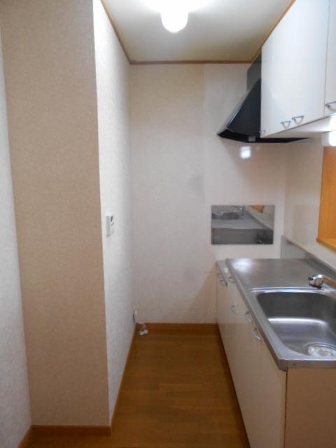 ルミエール南館 102号室のキッチン