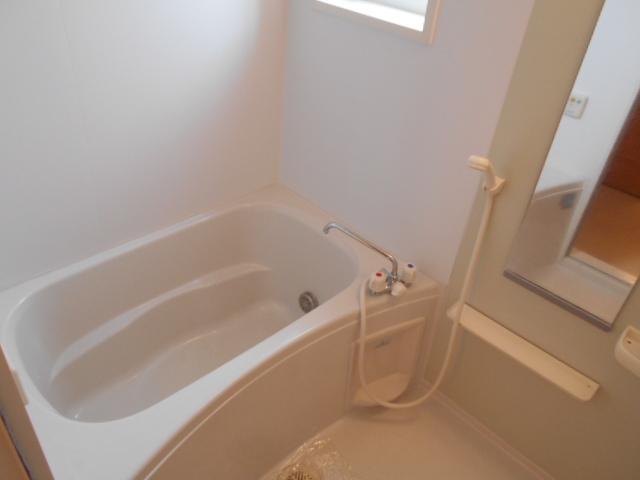 ルミエール南館 102号室の風呂