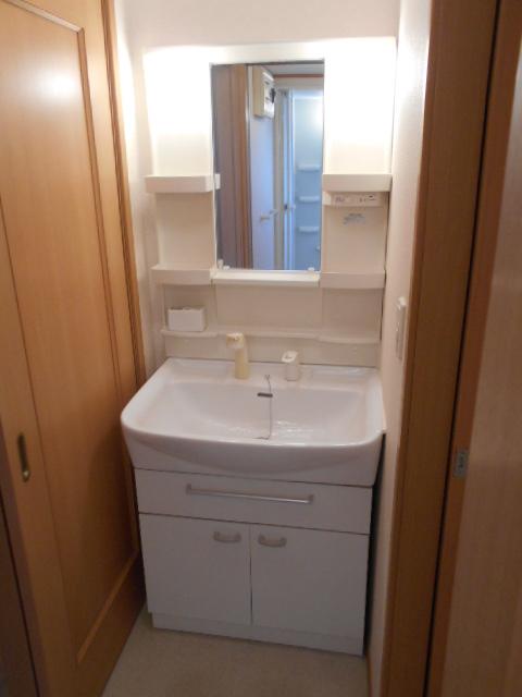 ルミエール南館 102号室の洗面所