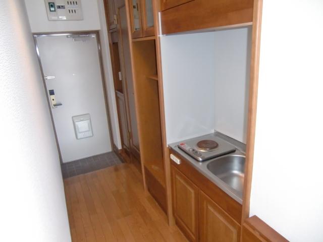 ダイレクトマンションNo1 203号室のキッチン