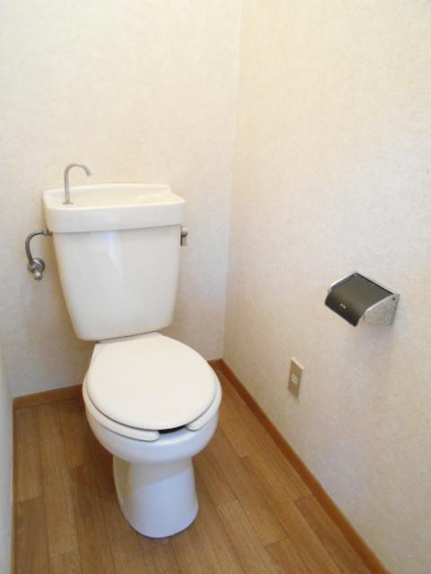 清水ハイツA 303号室のトイレ