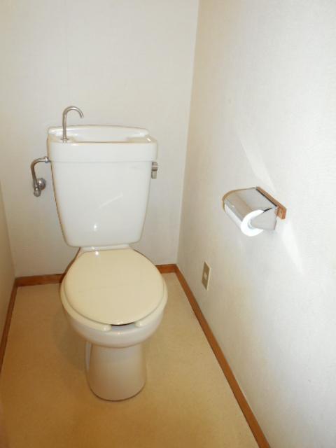 清水ハイツB 208号室のトイレ