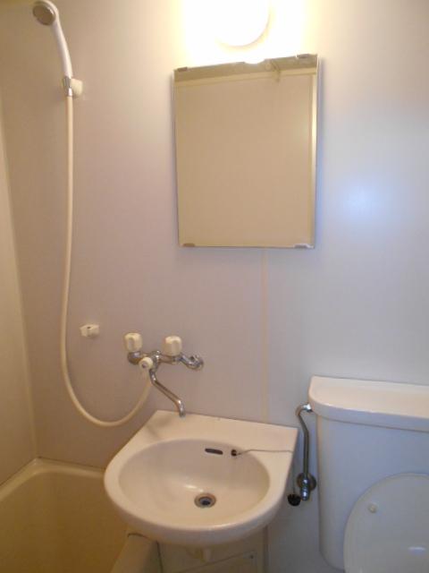 ロイヤルハイツ杉山 105号室の洗面所