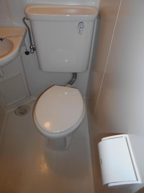 ロイヤルハイツ杉山 105号室のトイレ