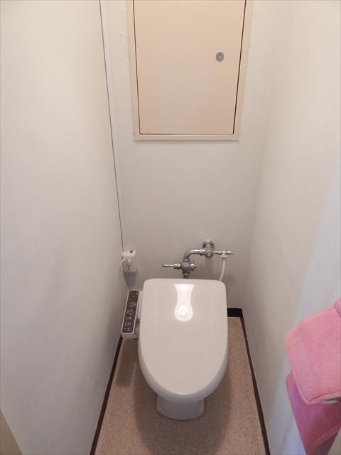 田口ビル 401号室のトイレ