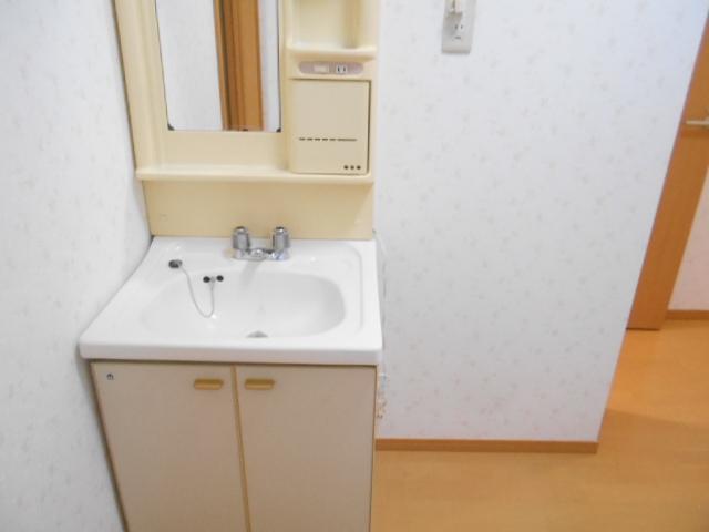 ハイツラフォーレ 201号室の洗面所