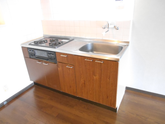 ヴィアーレヤマザキ A102号室のキッチン