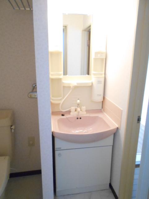 ヴィアーレヤマザキ A103号室の洗面所