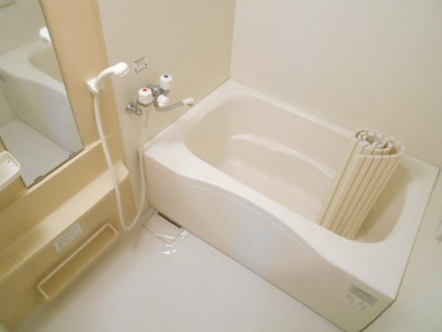 メゾンドゥリュイソー 201号室の風呂