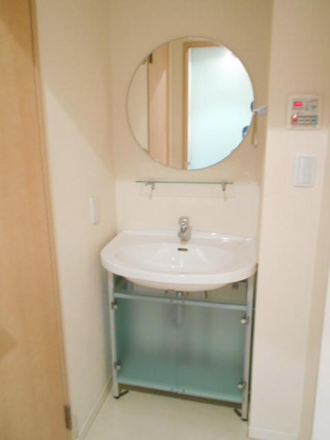 メゾンドゥリュイソー 201号室の洗面所