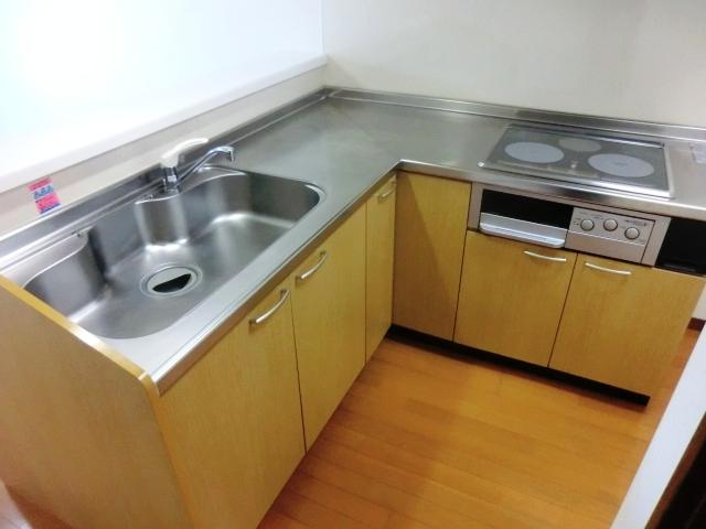 ダイレクトマンションNo2 101号室のキッチン