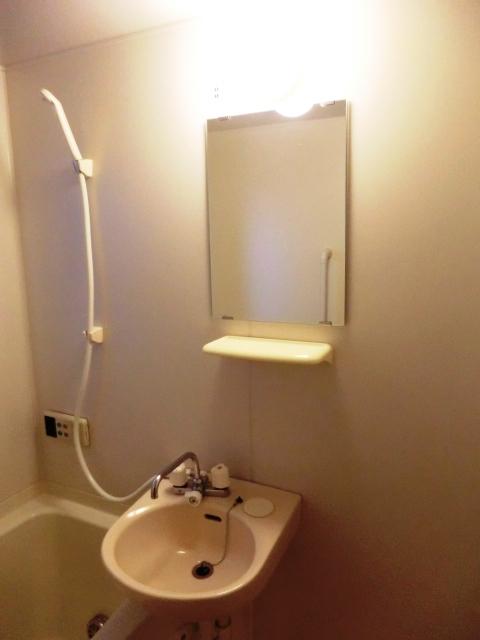 ダイレクトマンションNo2 101号室の洗面所