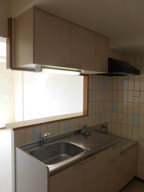 オリンピアヒルズ豊春 307号室のキッチン