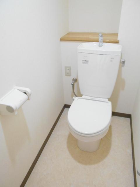 オリンピアヒルズ豊春 307号室のトイレ