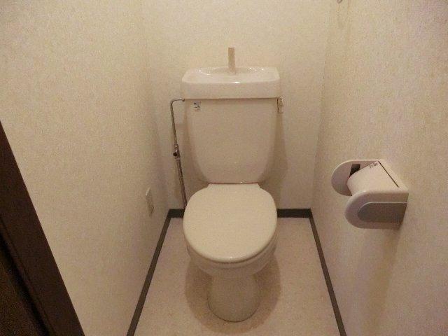 メゾン・ド・華 203号室のトイレ