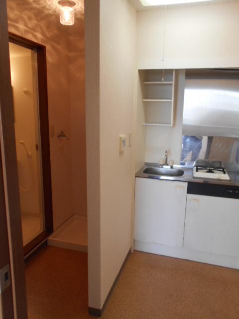 メゾン・ド・華 301号室のその他