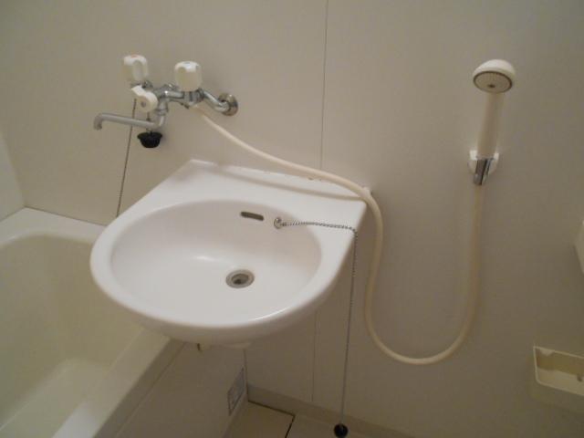 メゾン・ド・華 301号室の洗面所
