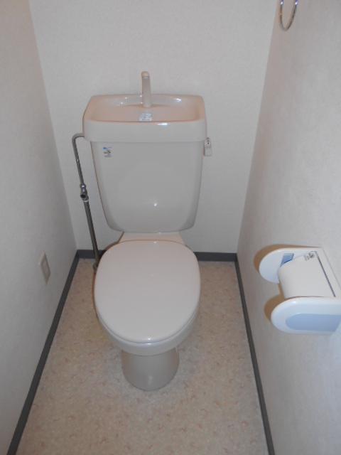 メゾン・ド・華 301号室のトイレ