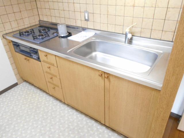 エレガンス春日部 106号室のキッチン