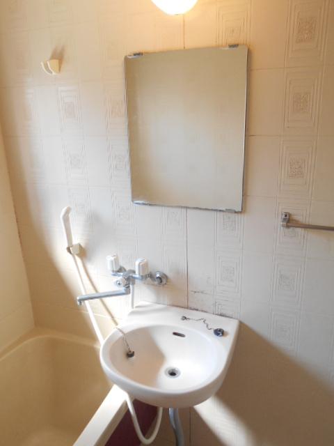 田園ハイネス B号室の洗面所