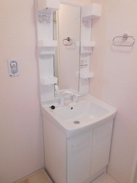 セジュールウィット大池Ⅱ 205号室の洗面所