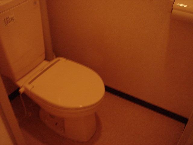 アクリベール有馬 102号室のトイレ