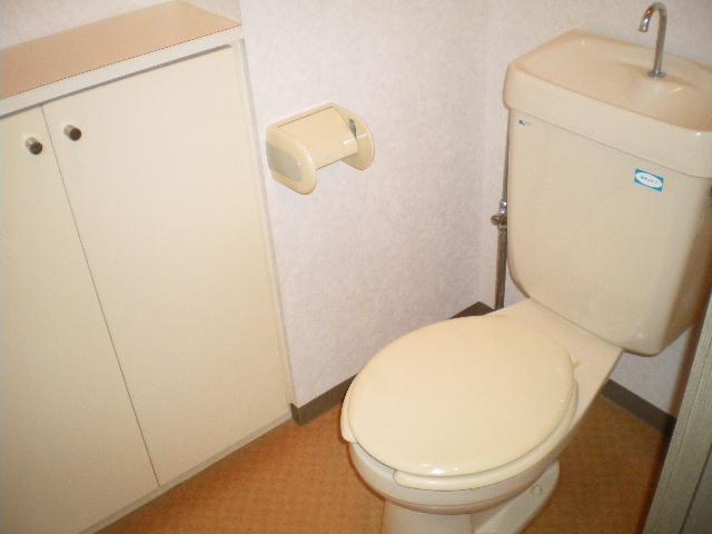 メルグリーン中川 101号室のトイレ