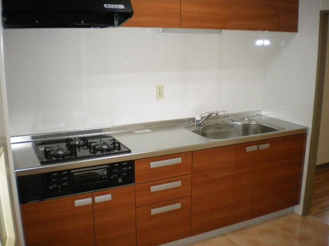 メルグリーン中川 101号室のキッチン