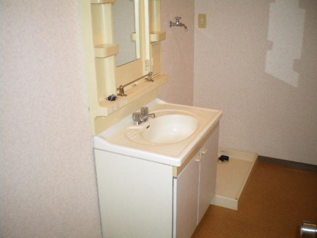 メルグリーン中川 101号室の洗面所
