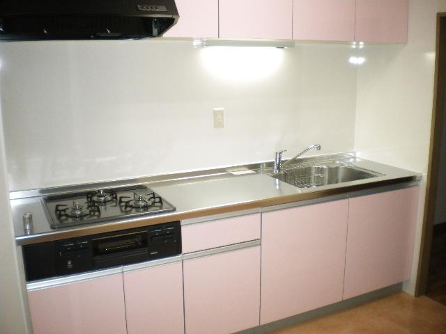 メルグリーン中川 102号室のキッチン